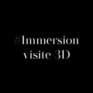 immersion visite 3d