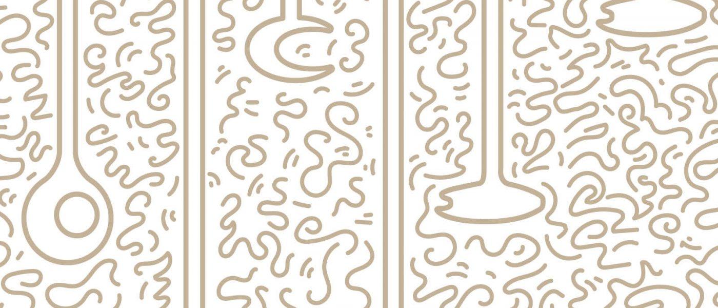 Illustration Silex Gallery par L'ébullition créative, Agence de communication Toulouse